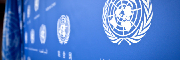 Concerns Over Growing Ranks of UN Consultants